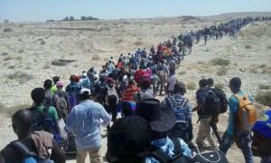 eritrearefugee