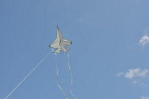 jsf-vlieger-2